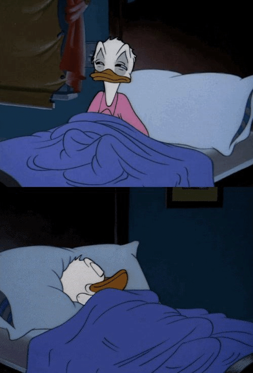 Donald duck sleeping meme