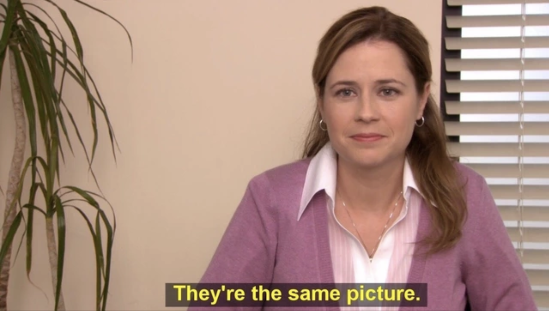They're the same picture pam the office meme