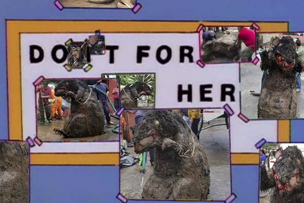 La rata gigante de la CDMX se robó nuestro corazón y nos dejó con estos 11 memazos