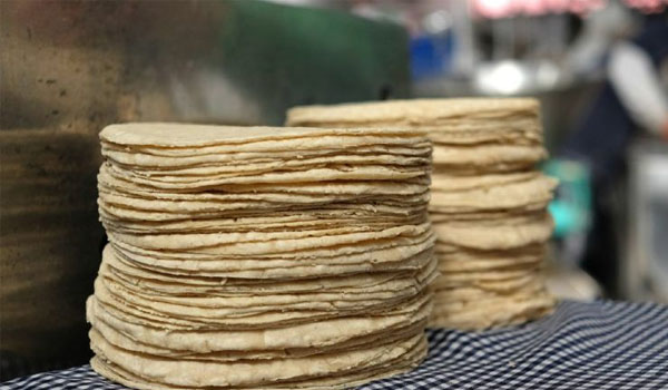 Mexicanos que no sepan que la tortilla tiene reverso y anverso perderán nacionalidad