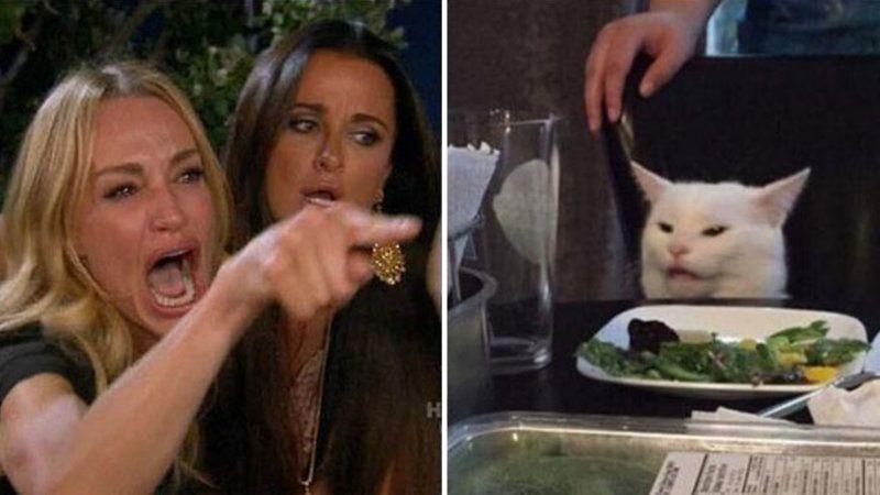 gato señora enojada meme