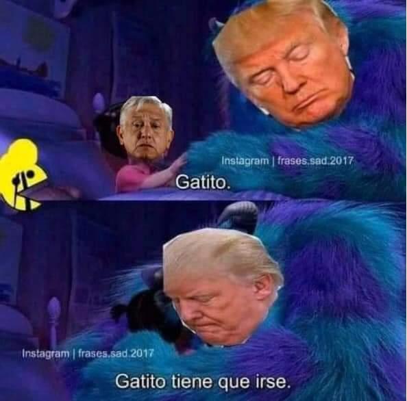 trump elecciones amlo meme