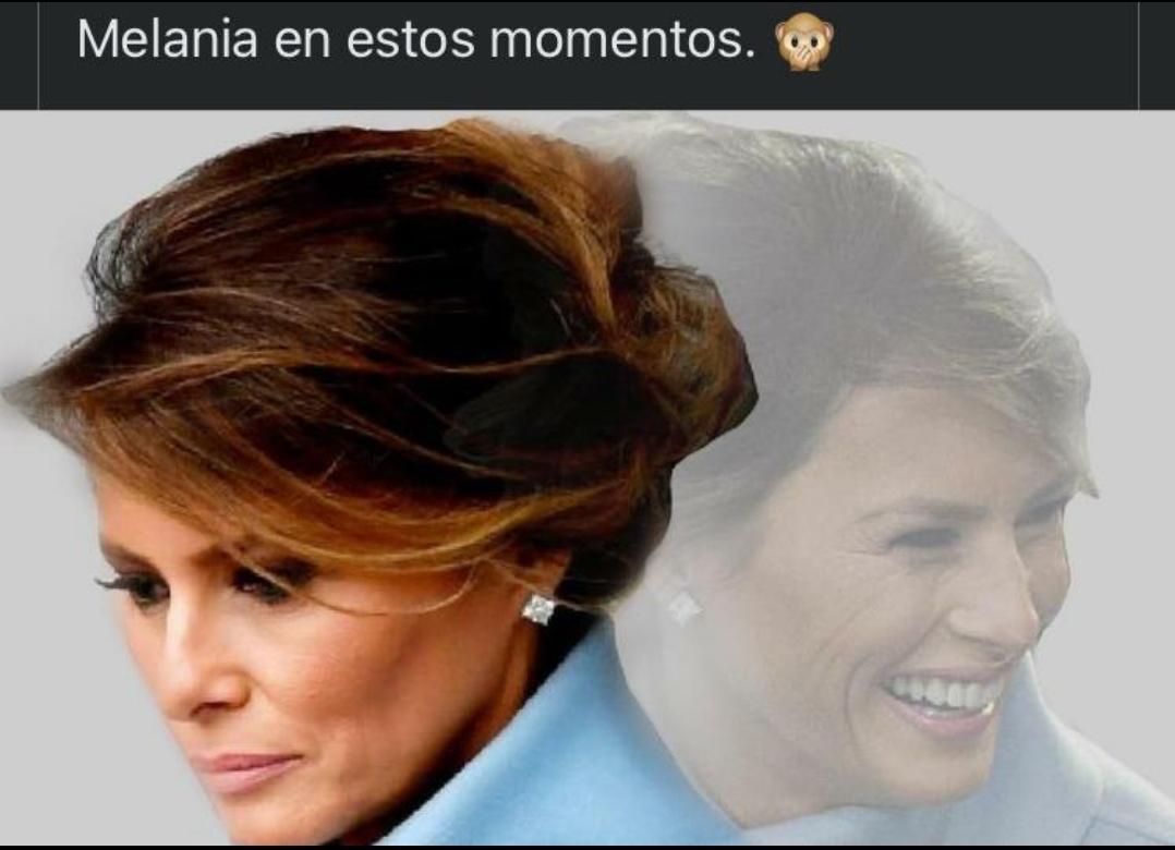 Melania Donald Trump meme