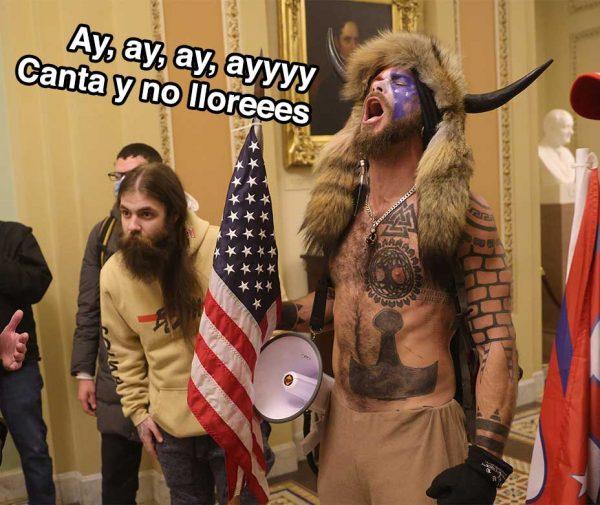 Manifestantes en el Capitolio de Estados Unidos.