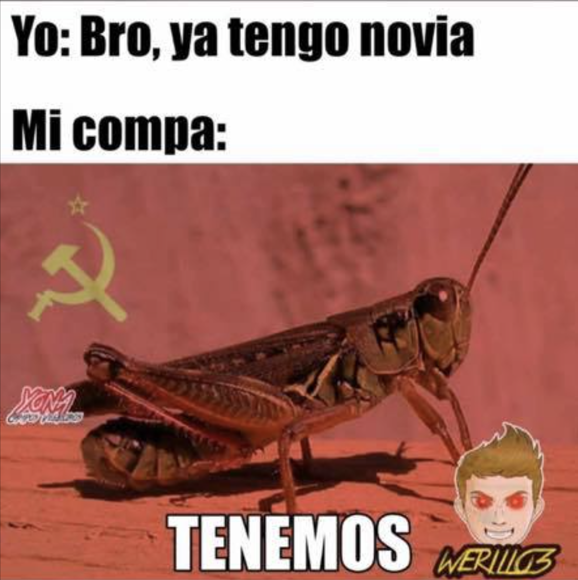 chapulinear meme