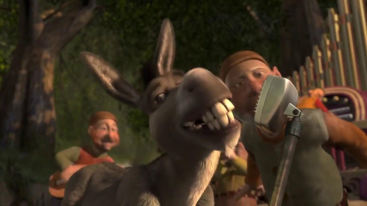 donkey singing