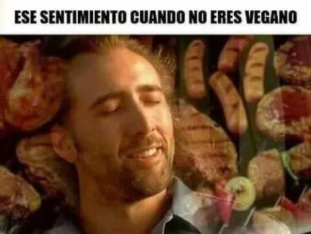 Cuando no eres vegano meme