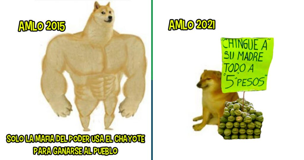 amlo chayote perro meme